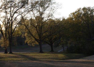 Chastain Park